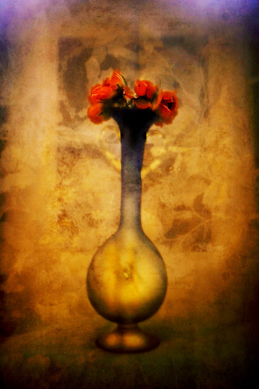 (P+R)Photography [ Fruits & Vase ]